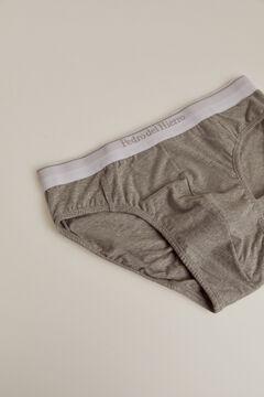 Pedro del Hierro Plain jersey-knit briefs Grey